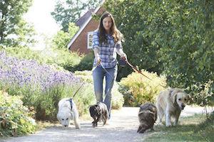 5 Satisfying Alternatives to Pet Ownership